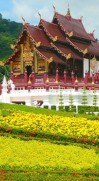 Buy Property in Chiang Mai